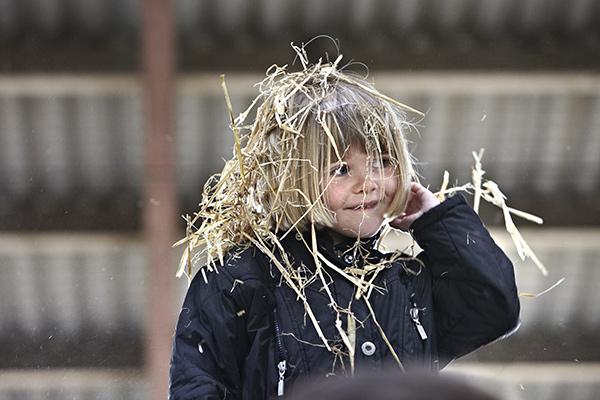 Økodag 2012 hos Mads Helms, Isenbjergvej 19 Gludsted, 7361 Ejstrupholm. Fotograf: Henrik Hoeg